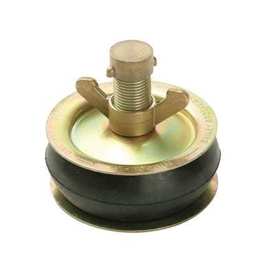 Bailey Drain Test Plug, Brass Cap