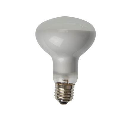 Energizer Lighting R80 Halogen Bulb